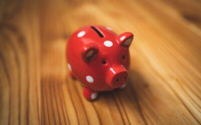 Waarom is die Business on a Budget website zó goedkoop?